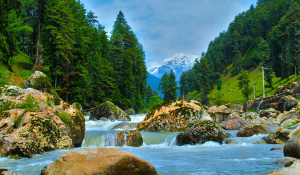 Travel Guide for Trekking to Kheerganga